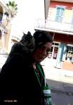 Happy Cat NOLA 2013