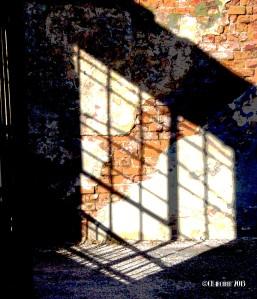 Shadows NOLA 2013