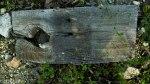 Wood with Hole